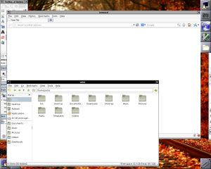 WindowMaker screenshot, showing Iceweasel, Terminal and others